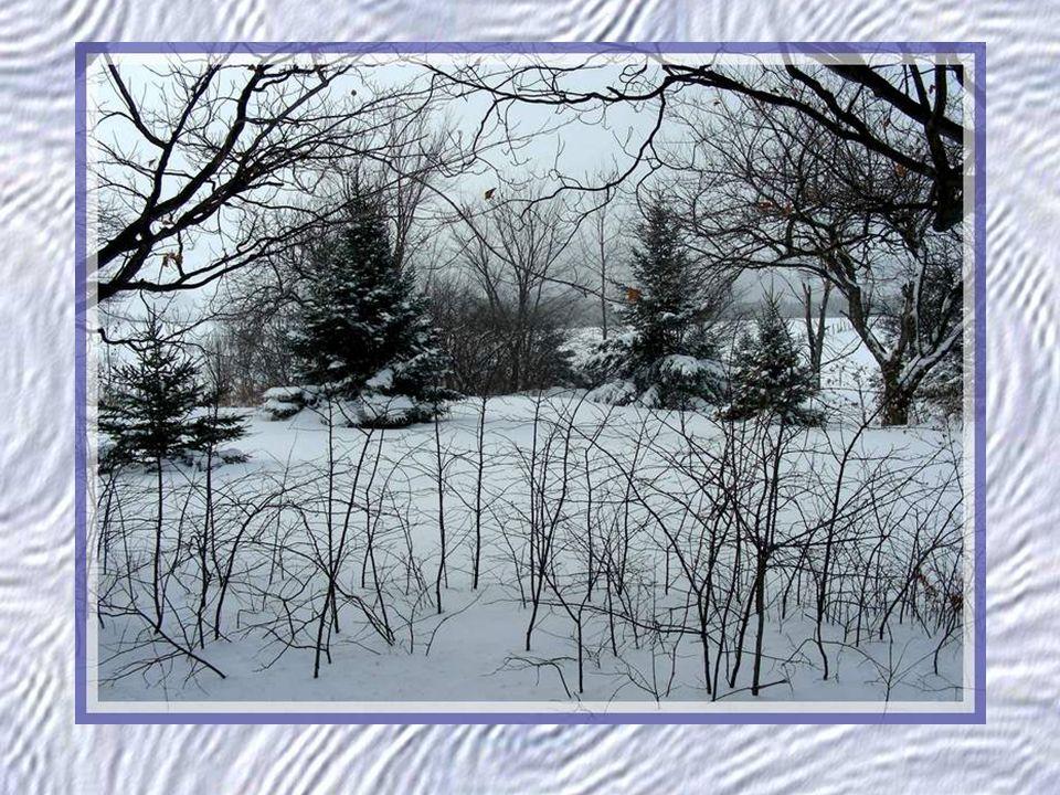 La neige tombe indiscontinument, Comme une lente et longue et pauvre laine, Parmi la morne et longue et pauvre plaine, Froide damour, chaude de haine.