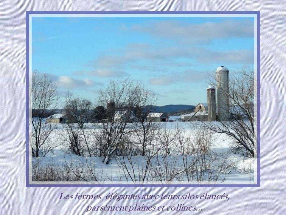 Comme il en existe tant au Québec, un vieux pont couvert.