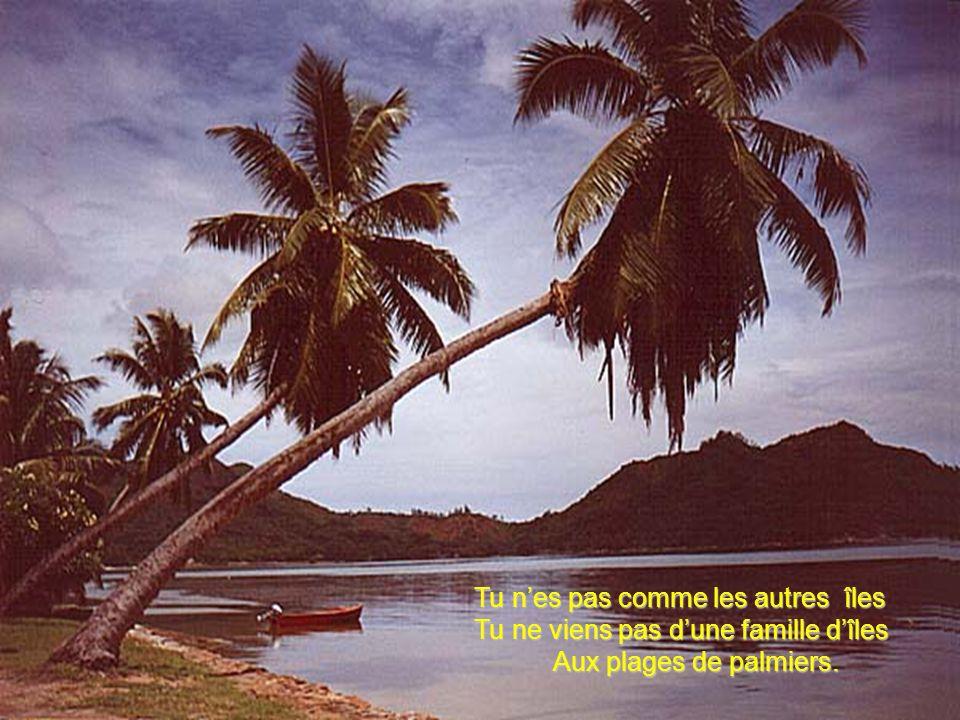Tu nes pas comme les autres îles Tu ne viens pas dune famille dîles Aux plages de palmiers.