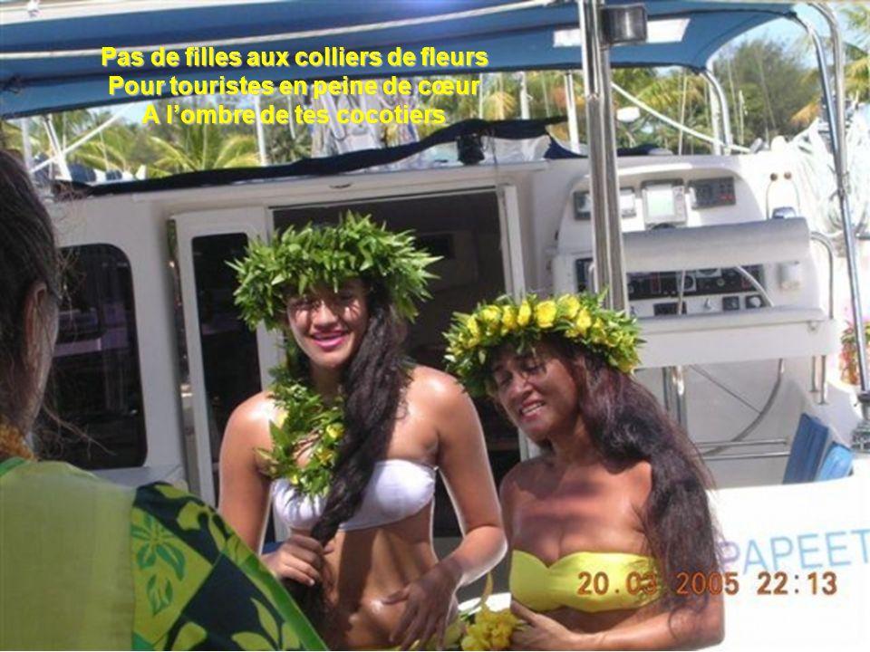 Pas de filles aux colliers de fleurs Pour touristes en peine de cœur A lombre de tes cocotiers