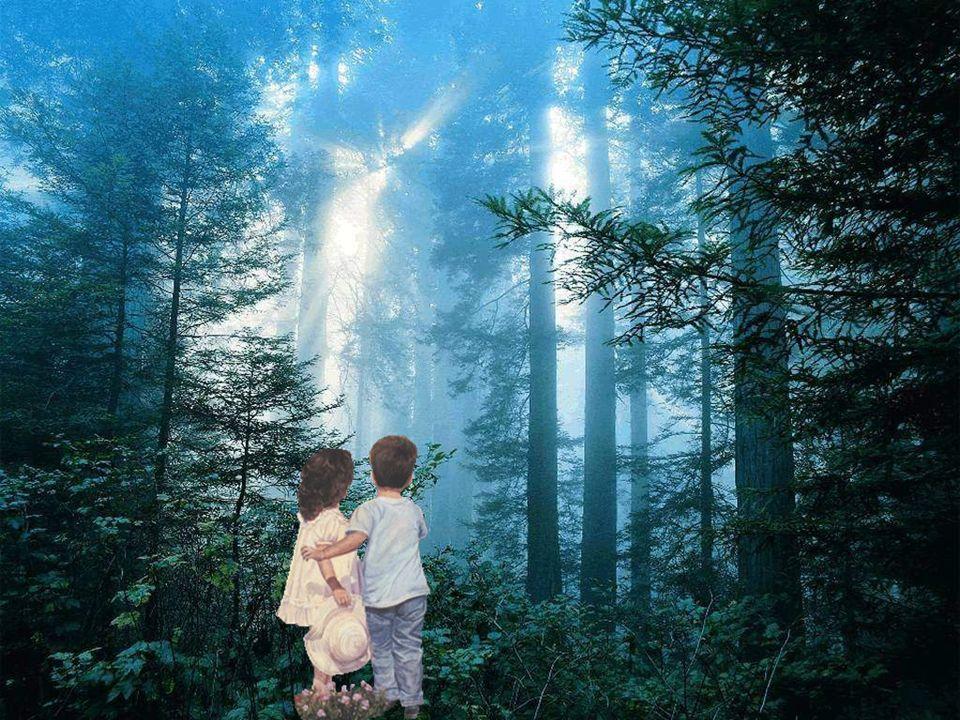L'amour est comme un arbre… Quand il est bien nourrit, il donne de beaux fruits. Ces doux fruits de l'amour que sont tous les enfants Qui font battre
