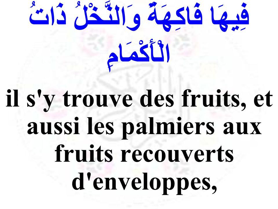 فِيهَا فَاكِهَةٌ وَالنَّخْلُ ذَاتُ الْأَكْمَامِ il s'y trouve des fruits, et aussi les palmiers aux fruits recouverts d'enveloppes,