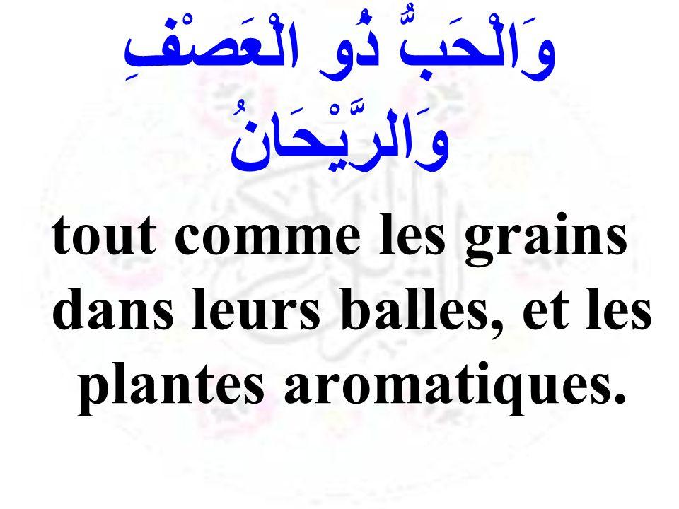وَالْحَبُّ ذُو الْعَصْفِ وَالرَّيْحَانُ tout comme les grains dans leurs balles, et les plantes aromatiques.