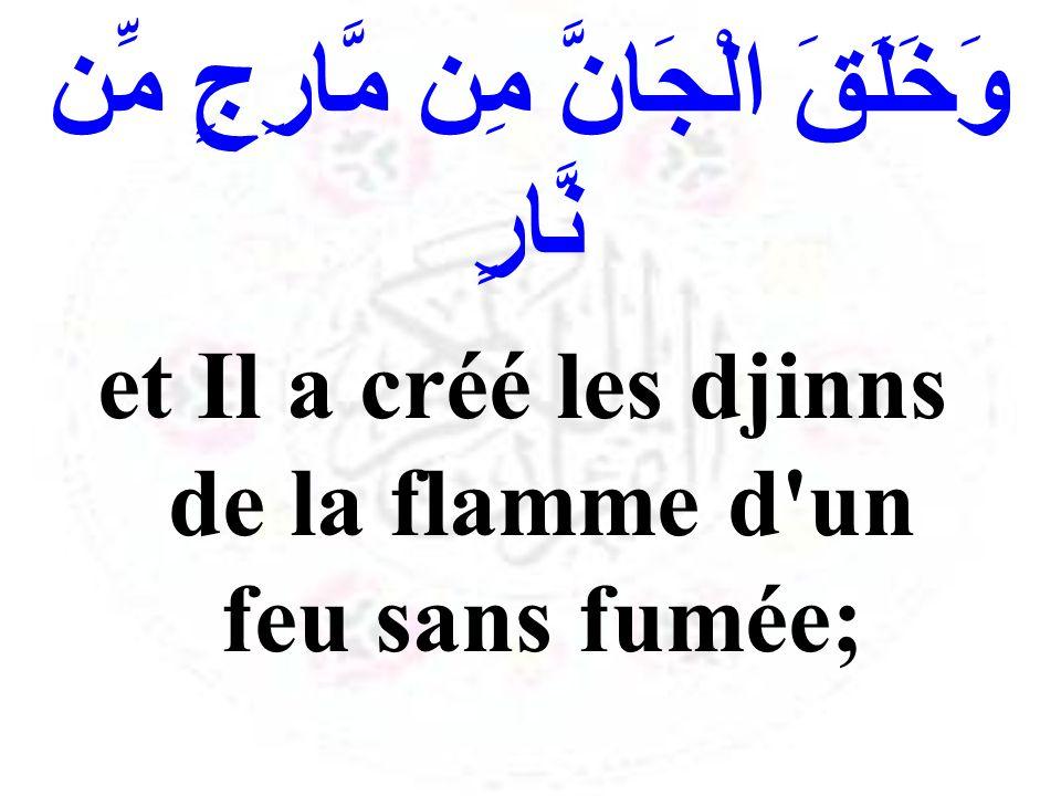وَخَلَقَ الْجَانَّ مِن مَّارِجٍ مِّن نَّارٍ et Il a créé les djinns de la flamme d'un feu sans fumée;