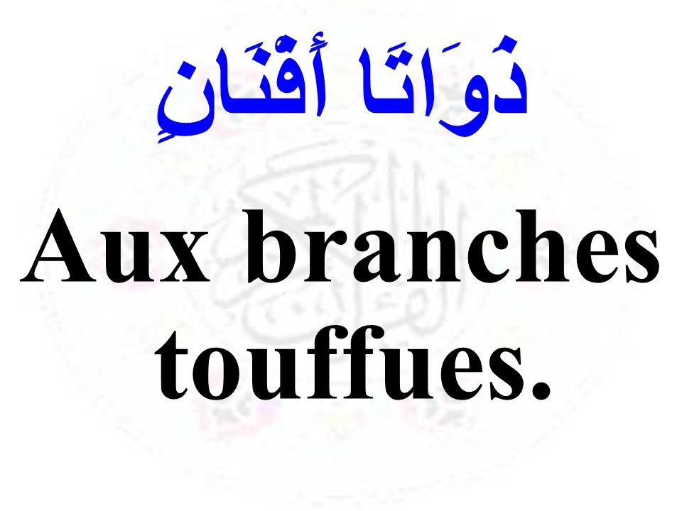 ذَوَاتَا أَفْنَانٍ Aux branches touffues.