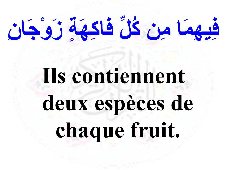 فِيهِمَا مِن كُلِّ فَاكِهَةٍ زَوْجَانِ Ils contiennent deux espèces de chaque fruit.