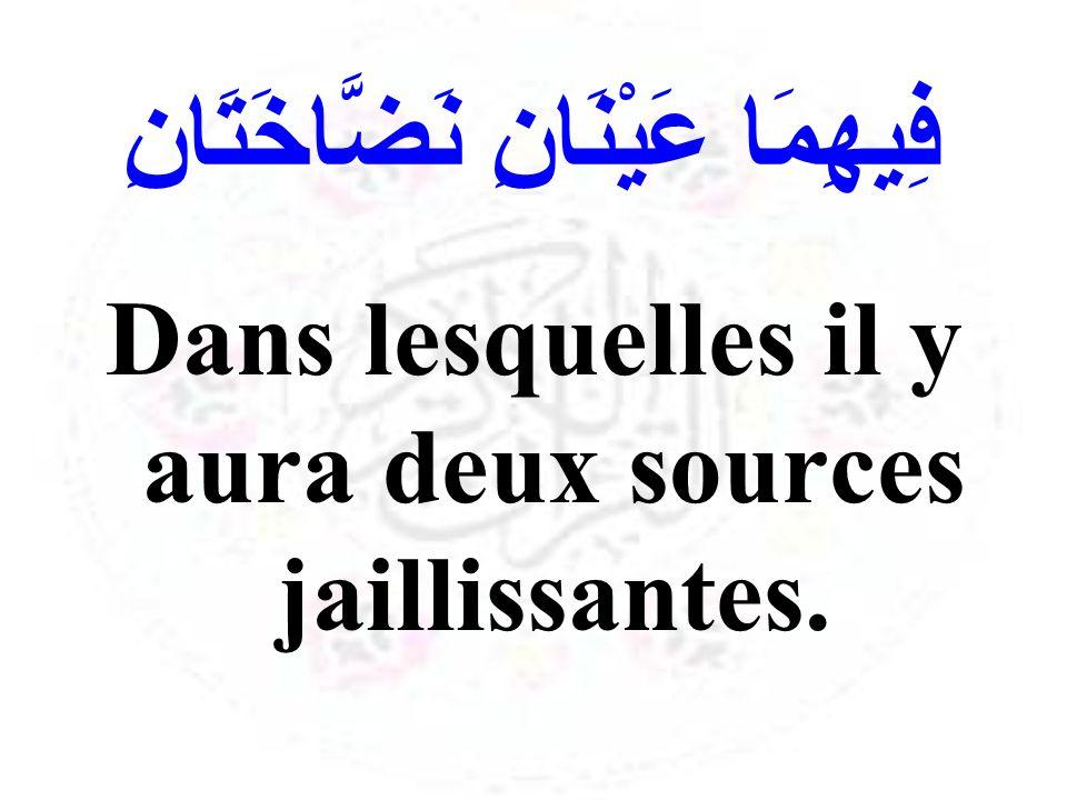 فِيهِمَا عَيْنَانِ نَضَّاخَتَانِ Dans lesquelles il y aura deux sources jaillissantes.