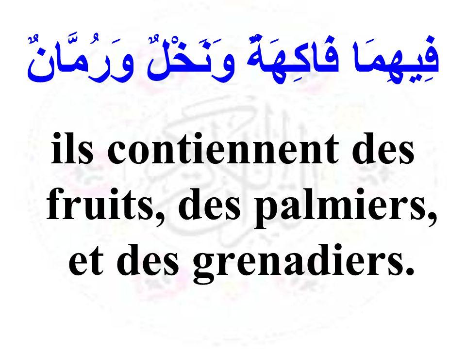 فِيهِمَا فَاكِهَةٌ وَنَخْلٌ وَرُمَّانٌ ils contiennent des fruits, des palmiers, et des grenadiers.