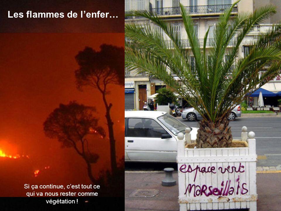 Malheureusement, comme partout ailleurs, à Marseille nous avons aussi nos malades ! Ils profitent des gentillesses de Môssieur Mistral pour nous mettr