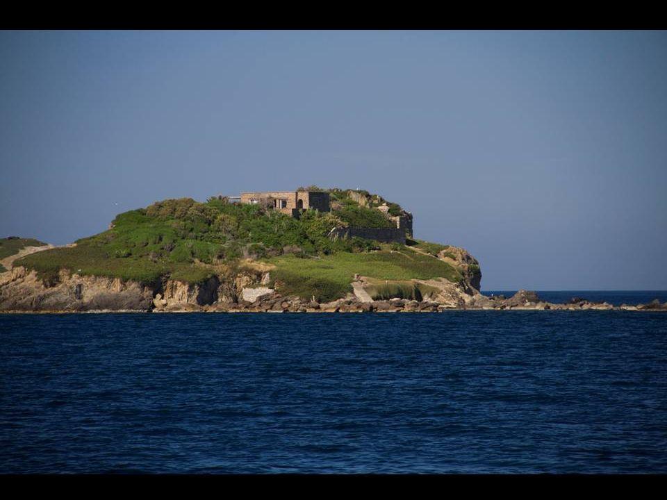 Elle abrite un petit port qui permet de rejoindre l'île de Porquerolles par ferry.