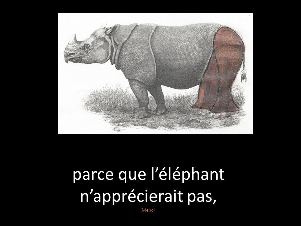 parce que léléphant napprécierait pas, Mehdi