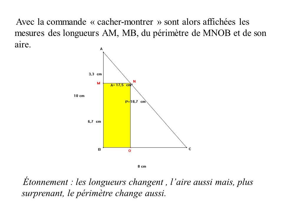 Avec la commande « cacher-montrer » sont alors affichées les mesures des longueurs AM, MB, du périmètre de MNOB et de son aire. Étonnement : les longu