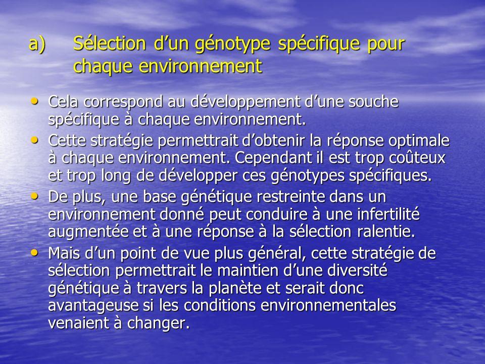 a)Sélection dun génotype spécifique pour chaque environnement Cela correspond au développement dune souche spécifique à chaque environnement. Cela cor