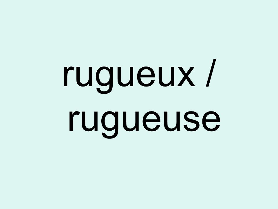 rugueux / rugueuse