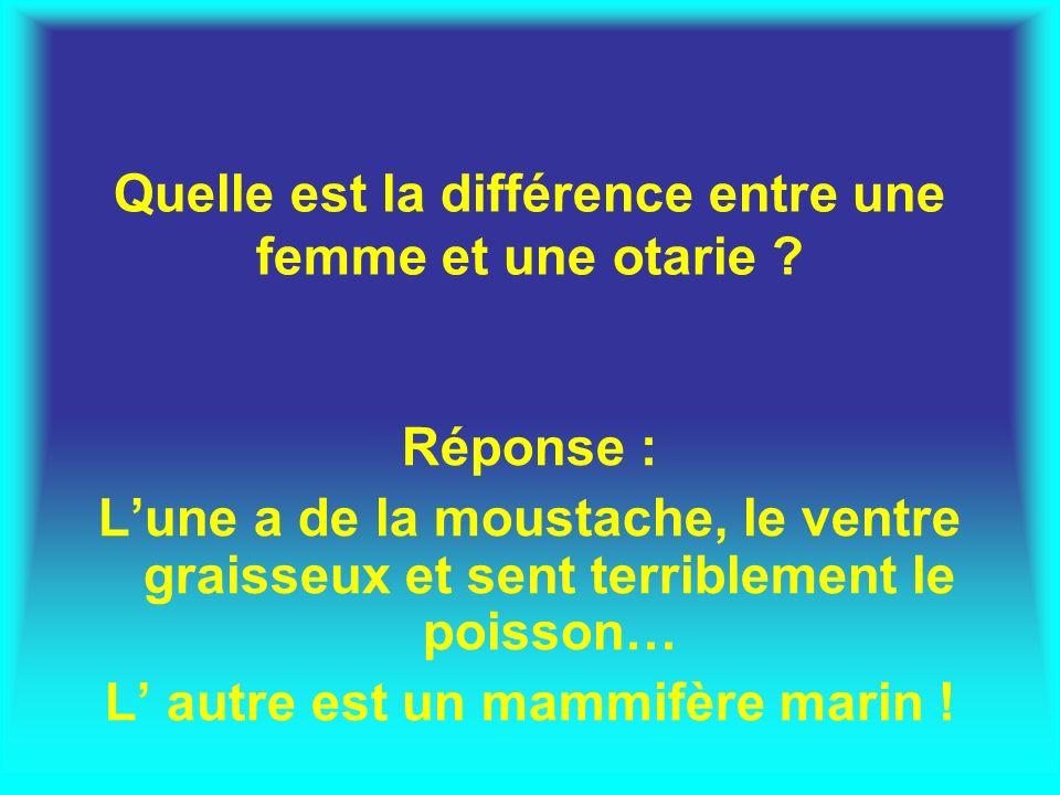 Quelle est la différence entre une femme et une otarie ? Réponse : Lune a de la moustache, le ventre graisseux et sent terriblement le poisson… L autr