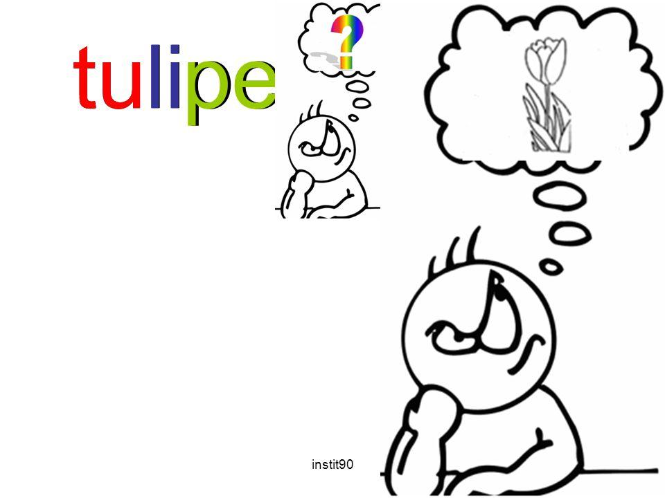 instit9020 tulipetulipe
