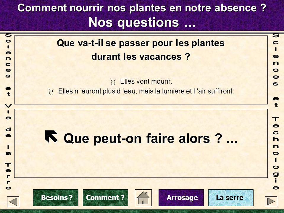 Comment nourrir nos plantes en notre absence ? Nos questions... Que va-t-il se passer pour les plantes durant les vacances ? Elles vont mourir. Elles