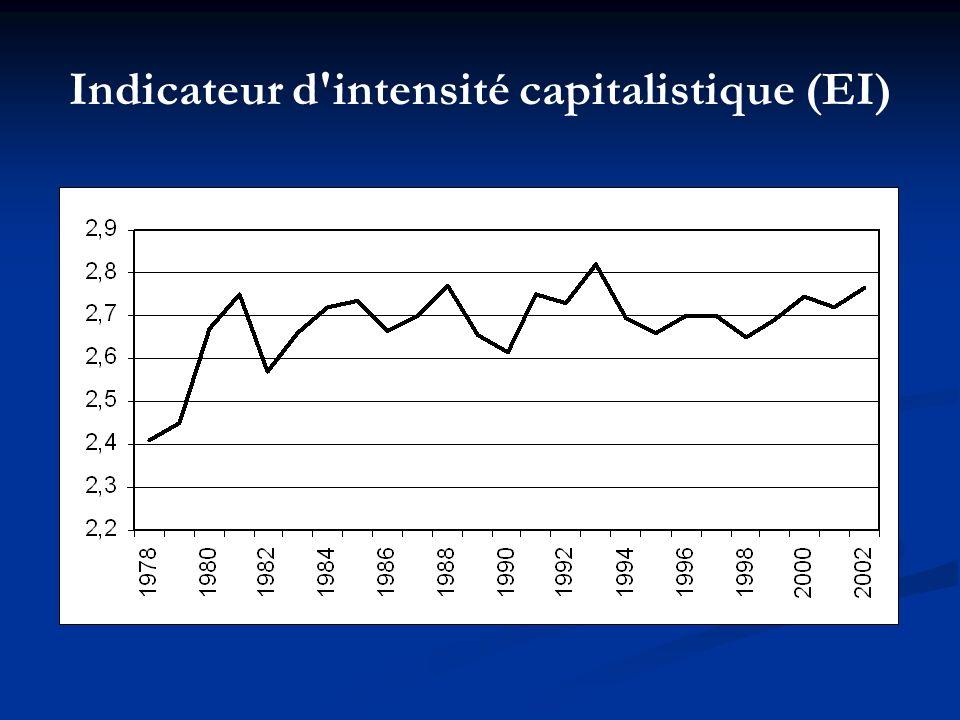 Indicateur d'intensité capitalistique (EI)