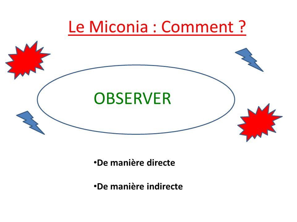 Le Miconia : Comment ? De manière directe De manière indirecte OBSERVER