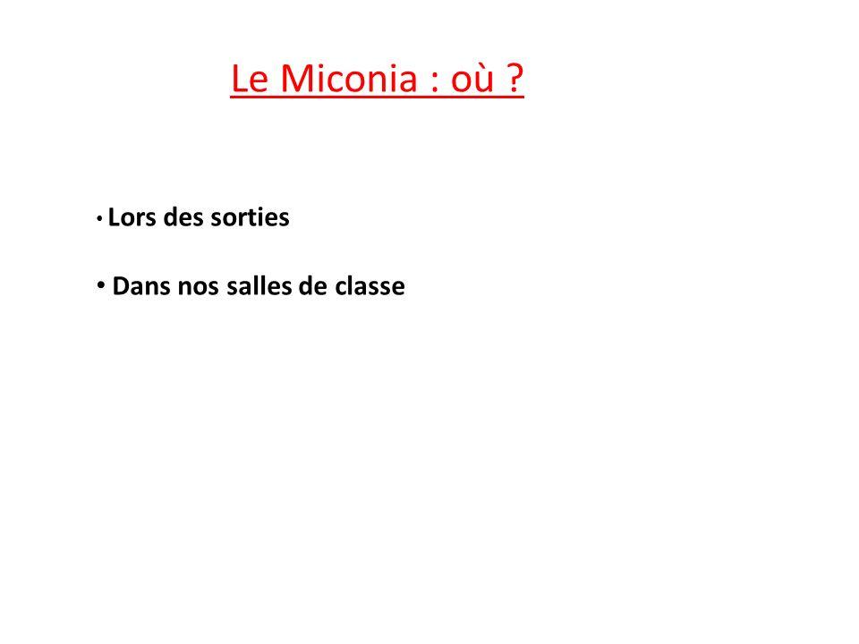 Le Miconia : où ? Lors des sorties Dans nos salles de classe