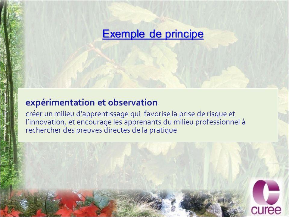 Exemple de principe Exemple de principe expérimentation et observation créer un milieu dapprentissage qui favorise la prise de risque et linnovation, et encourage les apprenants du milieu professionnel à rechercher des preuves directes de la pratique
