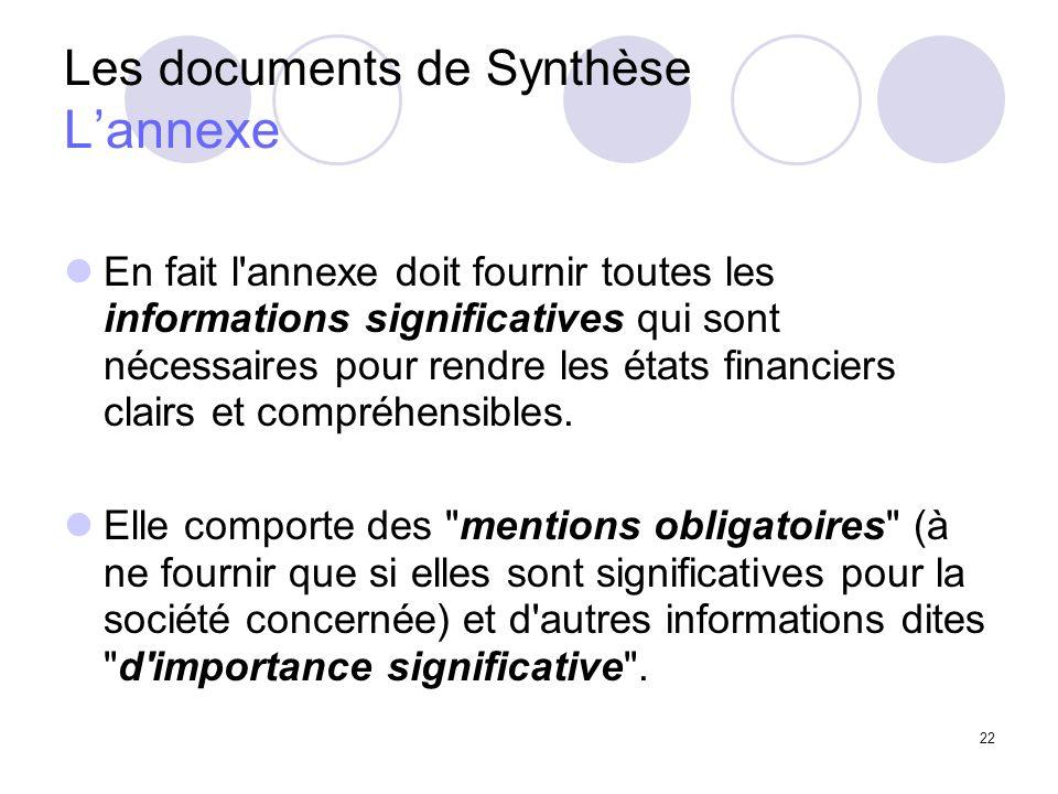 22 Les documents de Synthèse Lannexe En fait l annexe doit fournir toutes les informations significatives qui sont nécessaires pour rendre les états financiers clairs et compréhensibles.