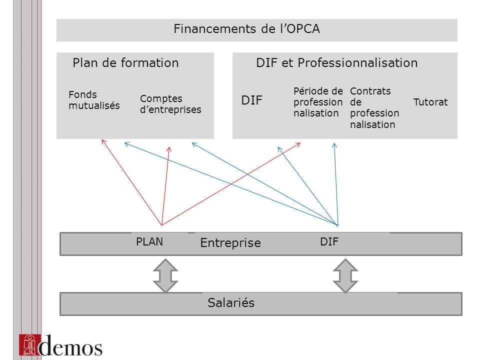 Plan de formation Fonds mutualisés Comptes dentreprises DIF Période de profession nalisation Tutorat Contrats de profession nalisation DIF et Professi