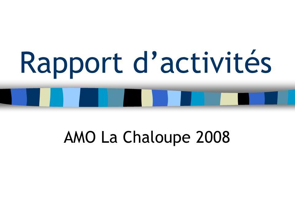 Rapport dactivités AMO La Chaloupe 2008