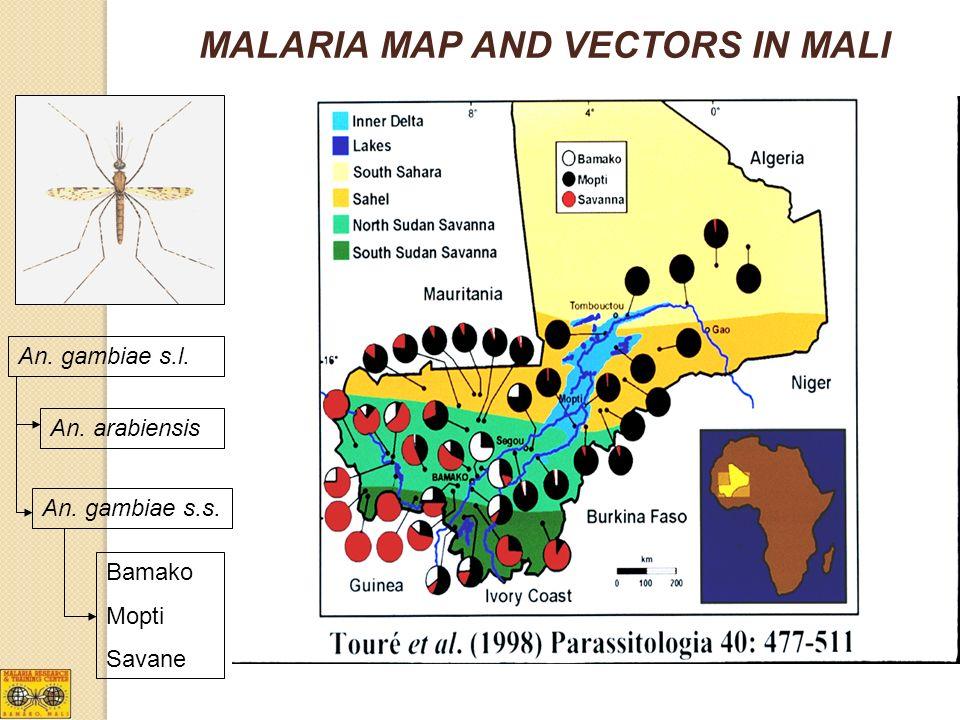 MALARIA MAP AND VECTORS IN MALI An. gambiae s.l. An. gambiae s.s. An. arabiensis Bamako Mopti Savane