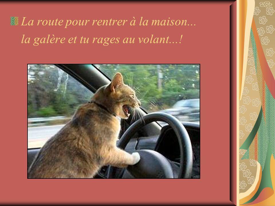 La route pour rentrer à la maison... la galère et tu rages au volant...!