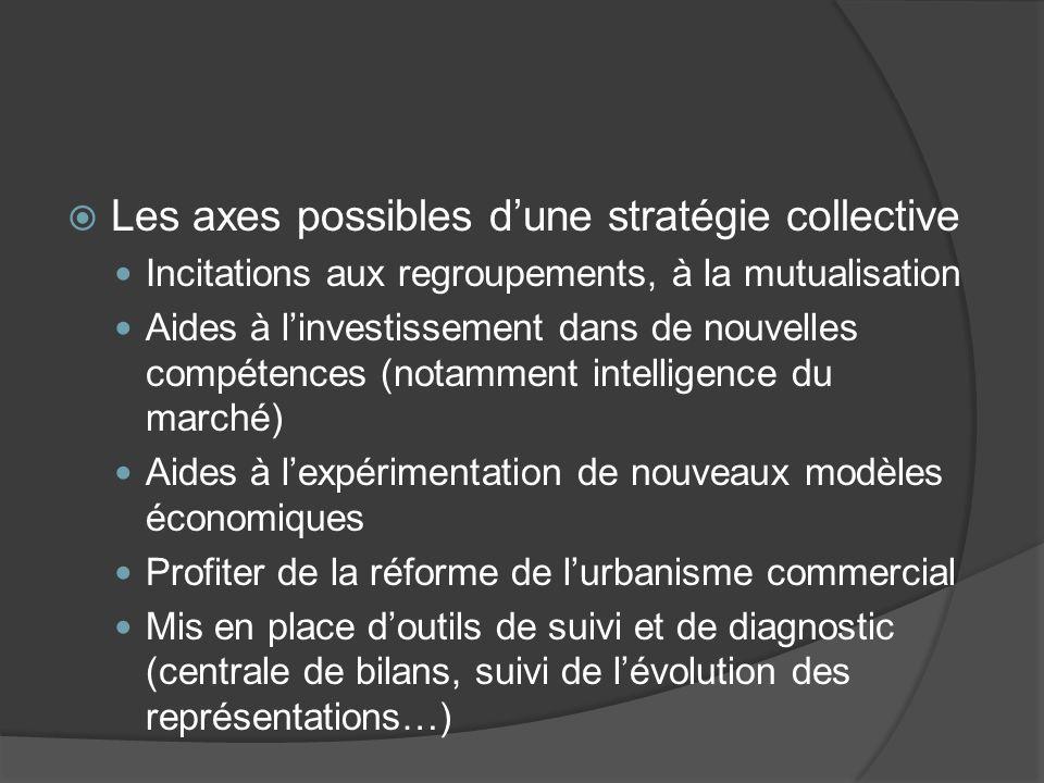 Les axes possibles dune stratégie collective Incitations aux regroupements, à la mutualisation Aides à linvestissement dans de nouvelles compétences (