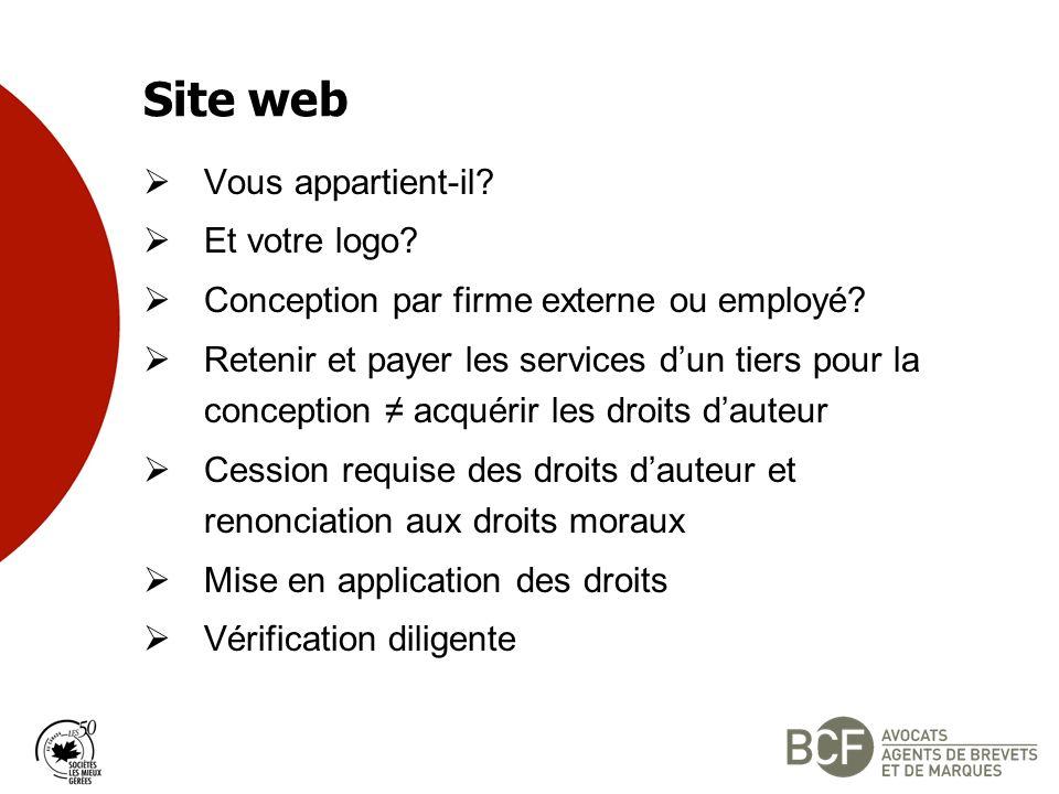 Site web Vous appartient-il.Et votre logo. Conception par firme externe ou employé.