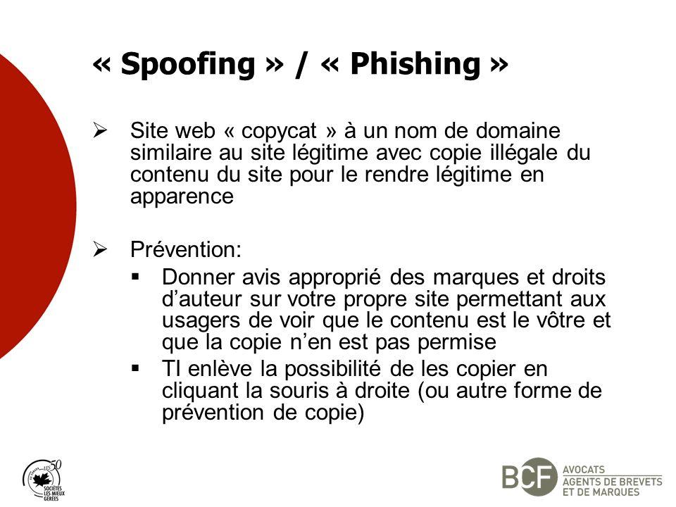 « Spoofing » / « Phishing » Site web « copycat » à un nom de domaine similaire au site légitime avec copie illégale du contenu du site pour le rendre légitime en apparence Prévention: Donner avis approprié des marques et droits dauteur sur votre propre site permettant aux usagers de voir que le contenu est le vôtre et que la copie nen est pas permise TI enlève la possibilité de les copier en cliquant la souris à droite (ou autre forme de prévention de copie)