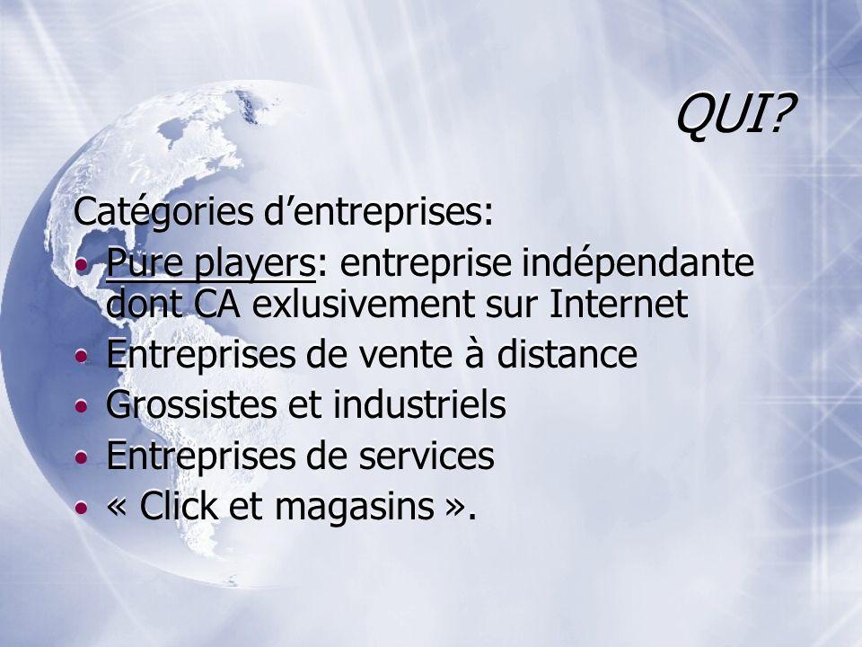 QUI? Catégories dentreprises: Pure players: entreprise indépendante dont CA exlusivement sur Internet Entreprises de vente à distance Grossistes et in