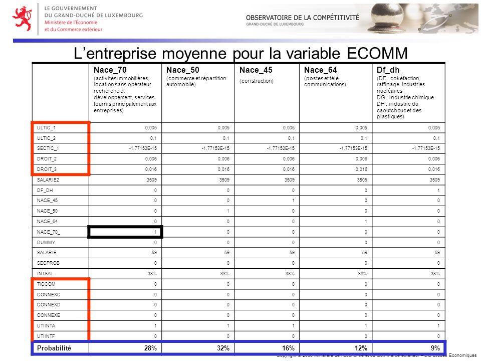 Copyright © 2006 Ministère de lEconomie et du Commerce extérieur – DG Etudes Economiques Lentreprise moyenne pour la variable ECOMM Nace_70 (activités
