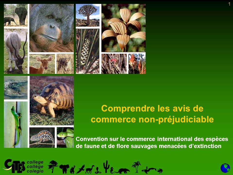 1 Comprendre les avis de commerce non-préjudiciable Convention sur le commerce international des espèces de faune et de flore sauvages menacées dextinction