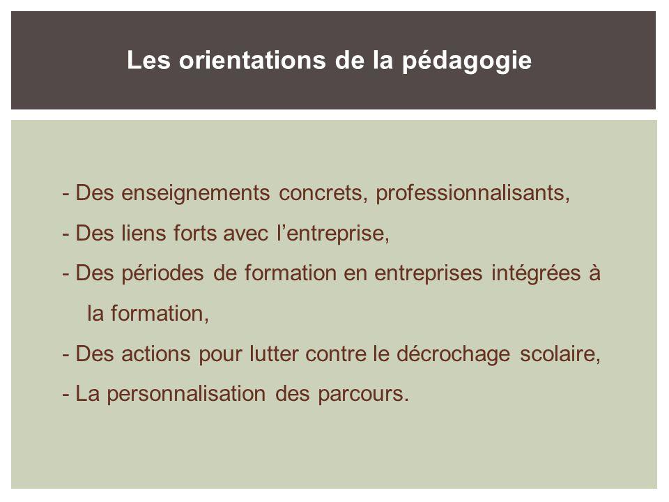 Les orientations de la pédagogie - Des enseignements concrets, professionnalisants, - Des liens forts avec lentreprise, - Des périodes de formation en entreprises intégrées à la formation, - Des actions pour lutter contre le décrochage scolaire, - La personnalisation des parcours.
