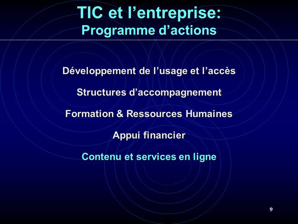 9 TIC et lentreprise: Programme dactions Développement de lusage et laccès Structures daccompagnement Formation & Ressources Humaines Appui financier Contenu et services en ligne