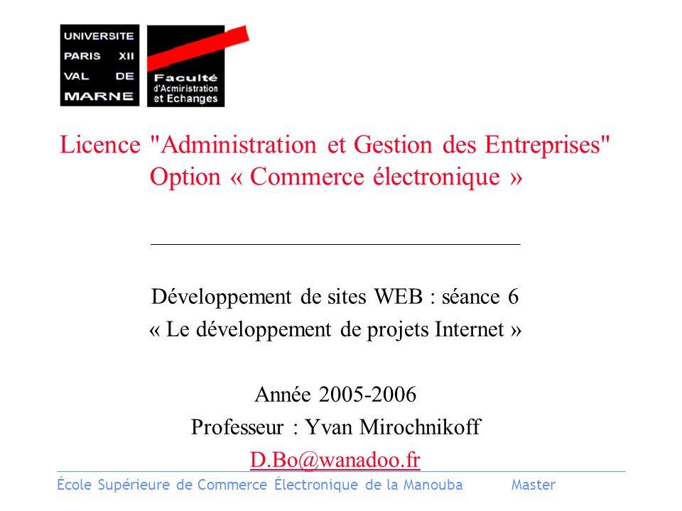 École Supérieure de Commerce Électronique de la ManoubaMaster Licence