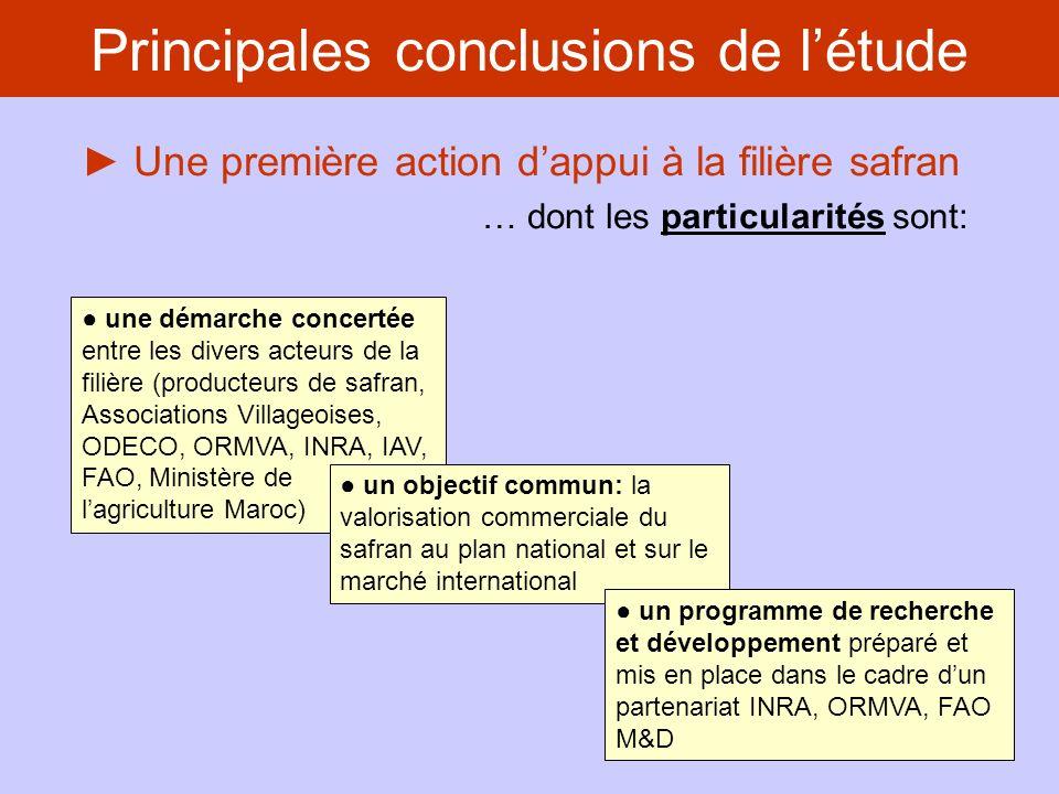 Une première action dappui à la filière safran … qui a été confrontée aux obstacles suivants: Principales conclusions de létude lorganisation des producteurs demeure problématique (manque de motivation des adhérents, restructuration de la coopérative SOUKTANA, inexpérience de la coopérative TALIOUINE) pas de dynamique inter- terroirs: absence de concertation entre les groupes de producteurs de Taliouine et de Tazenakht manque de clarté dans la démarche commerciale et pas de redistribution des gains de plus-value