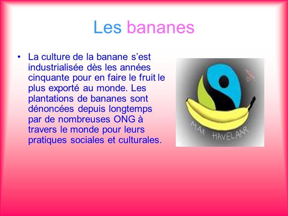 Les bananes La culture de la banane sest industrialisée dès les années cinquante pour en faire le fruit le plus exporté au monde. Les plantations de b