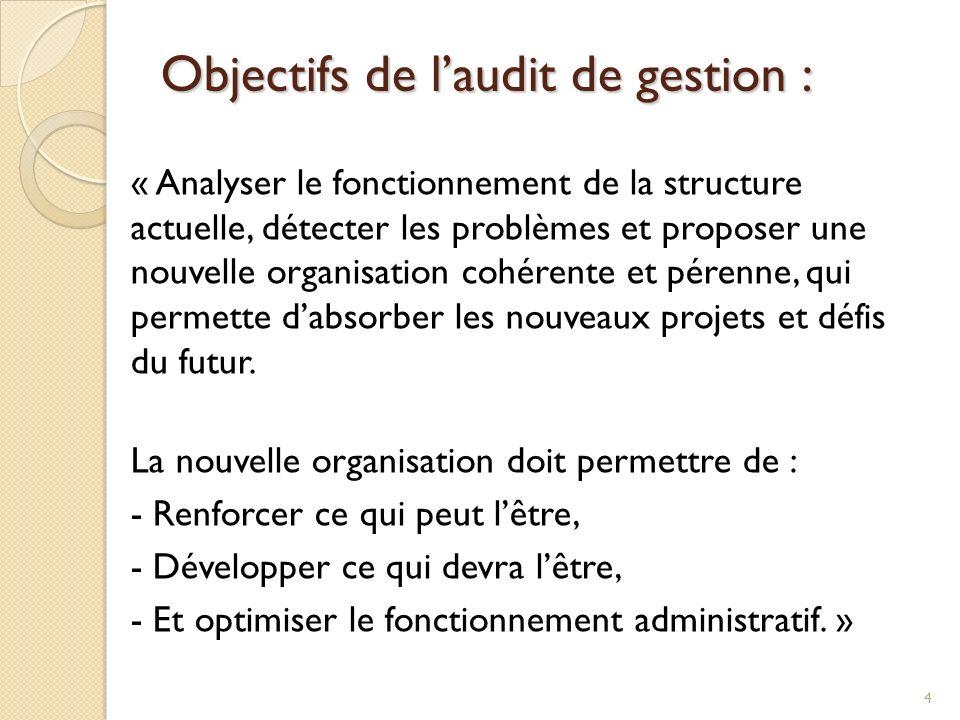 Objectifs de laudit de gestion : « Analyser le fonctionnement de la structure actuelle, détecter les problèmes et proposer une nouvelle organisation c