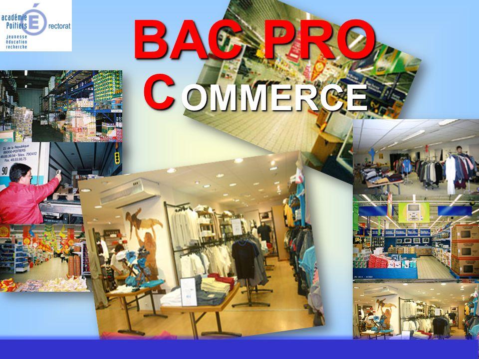 JMJ / Commerce Vente - AC Poitiers 2007 Bac Pro Commerce Vers Vers quel secteur d activités d activités .