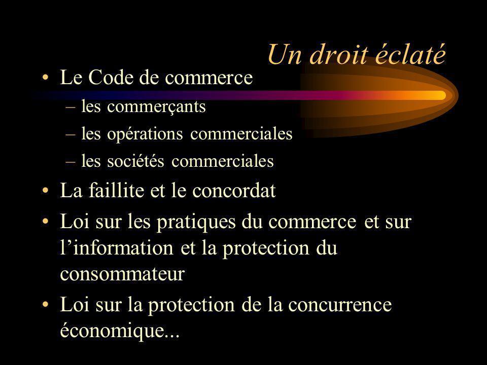 Le droit commercial et l internet La promotion commerciale et les contrats passés sur linternet Le droit de la concurrence économique La protection de la vie privée