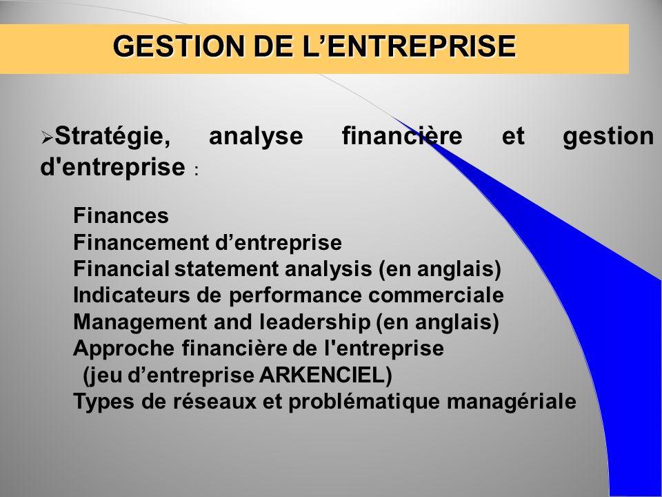 GESTION DE LENTREPRISE Stratégie, analyse financière et gestion d'entreprise : Finances Financement dentreprise Financial statement analysis (en angla