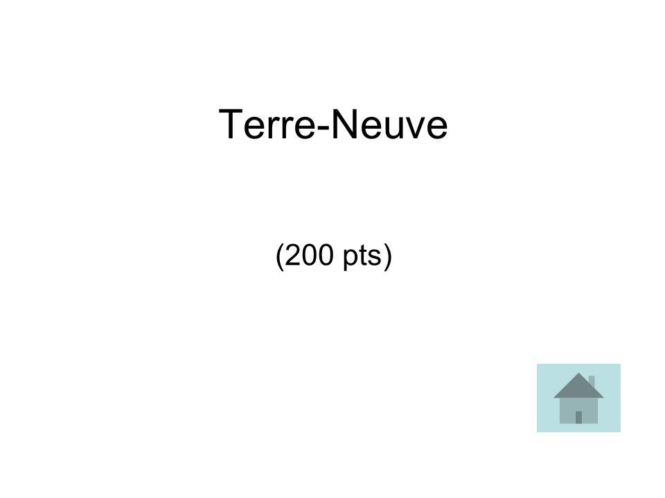 Terre-Neuve (200 pts)
