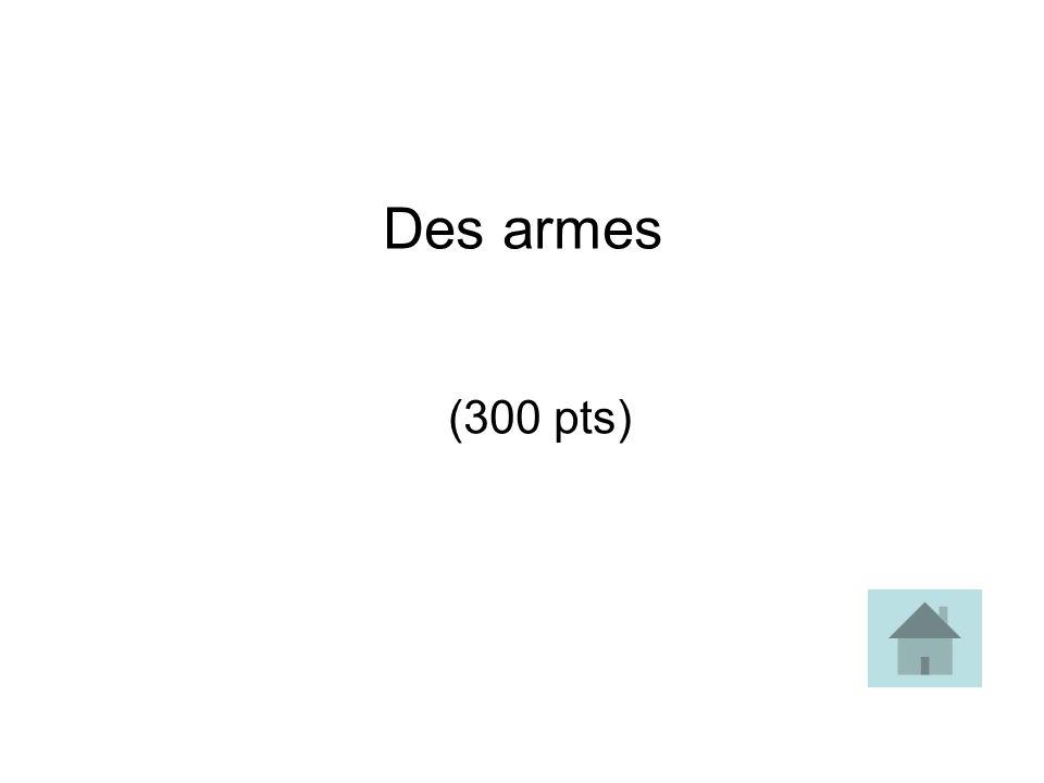 Des armes (300 pts)