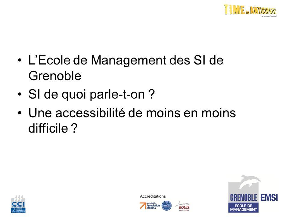 LEcole de Management des SI de Grenoble SI de quoi parle-t-on .