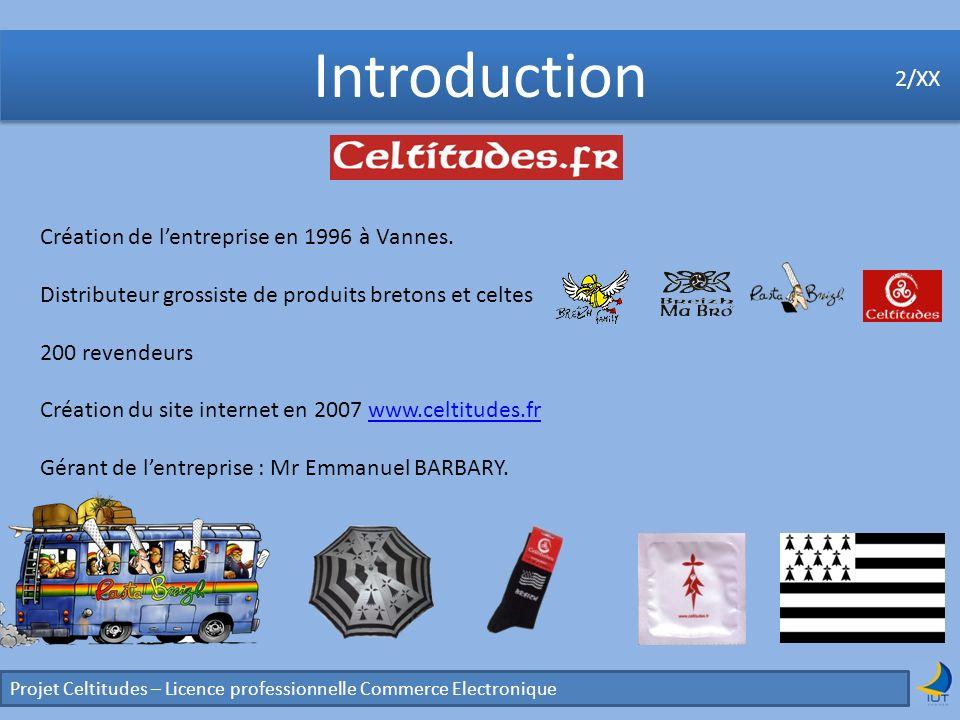 Introduction Projet Celtitudes – Licence professionnelle Commerce Electronique 2/XX Création de lentreprise en 1996 à Vannes. Distributeur grossiste d