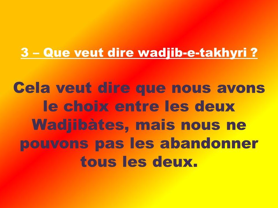 Cela veut dire que nous avons le choix entre les deux Wadjibàtes, mais nous ne pouvons pas les abandonner tous les deux.